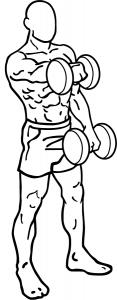 ombros 3
