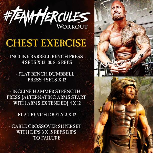 Hercules chest